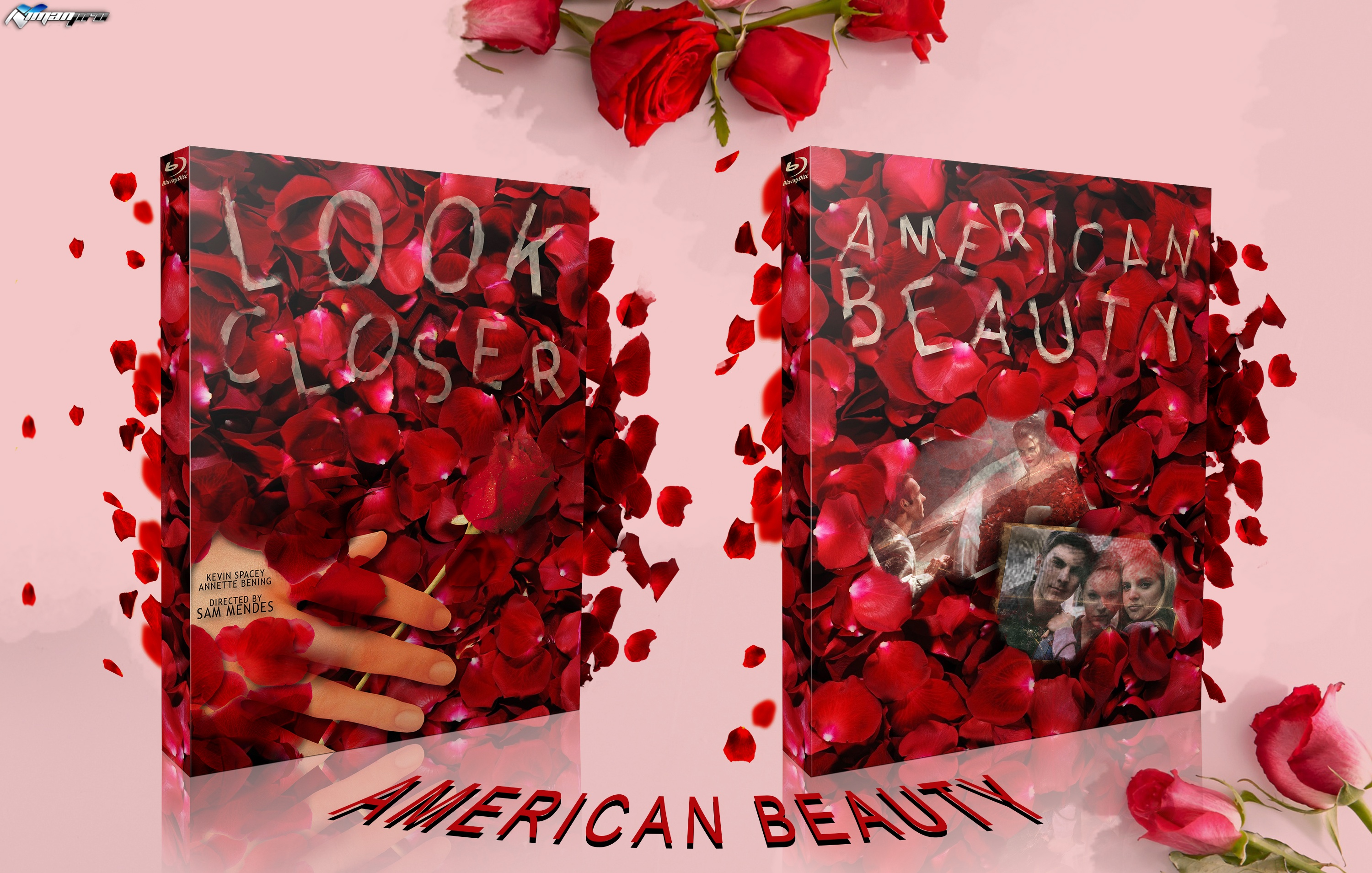 American Beauty box cover