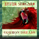 Enter Shikari: Common Dreads Box Art Cover
