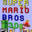 Super Mario Bros 3D Box Art Cover